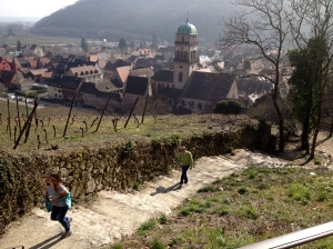 Exploring the hillside of  Eguisheim