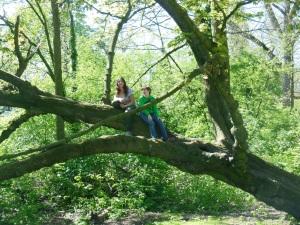 Climbing trees in Vondelpark.